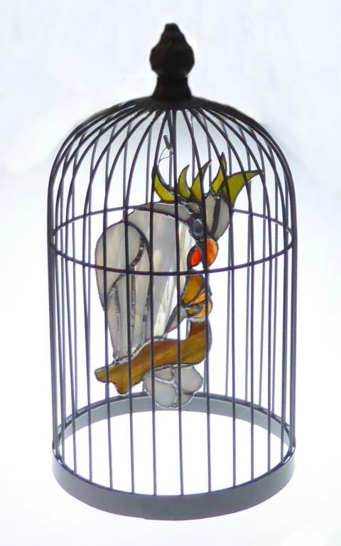 Cacatoès dans sa cage
